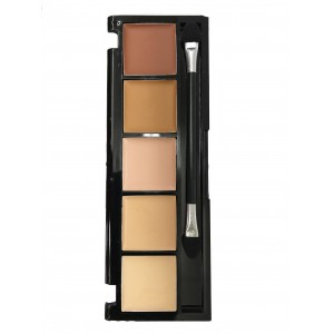 Ebo Ashley Lee Corrective Concealer Palette 5 Shade
