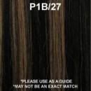 Off Black / Honey Blond - P1B/27  + $5.00